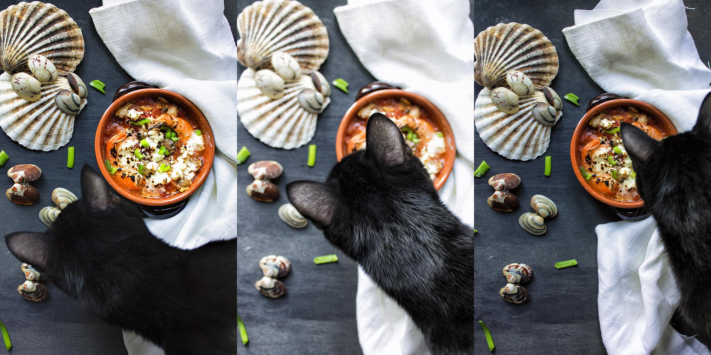 frutti-di-mare-in zuppetta-con-pomodorini-e-feta-4-contemporaneo-food