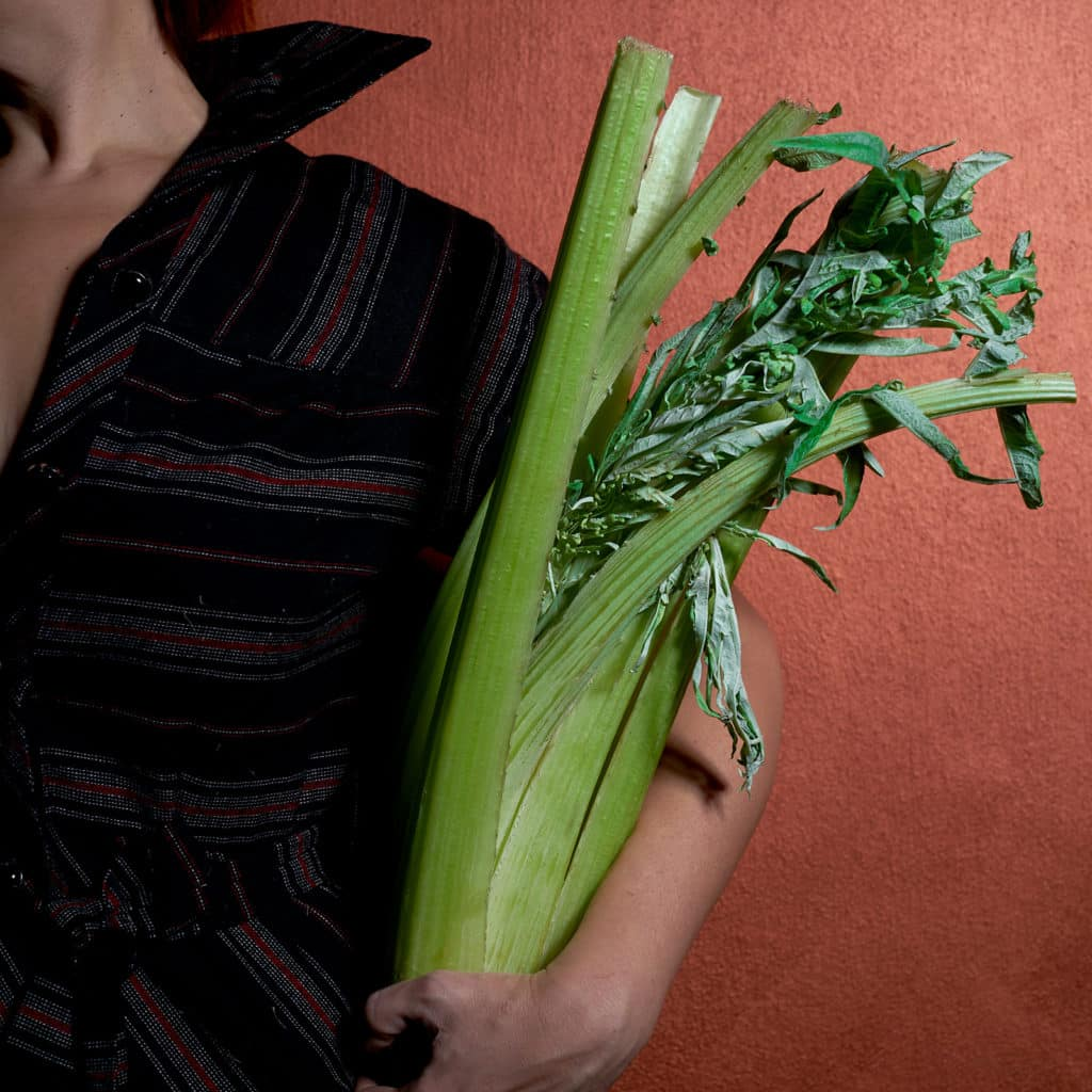 cardi-stagionailtà-proprietà-caratteristiche-controindicazioni-contemporaneo-food
