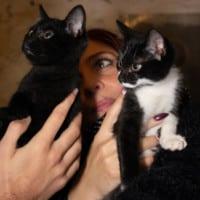 gattile-i-gattastri-piossasco-madrina-cristina-saglietti-contemporaneo-food