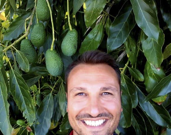 sicilia-avocado-contemporaneo-food